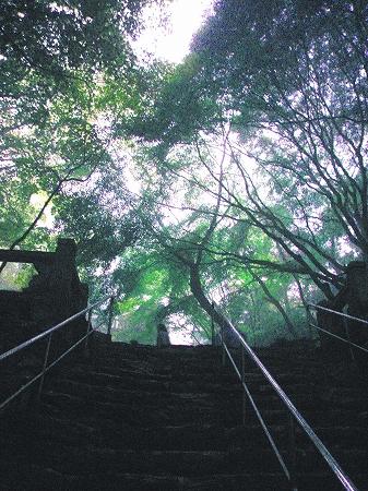 2008根香寺石段