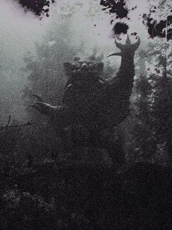 2008根香寺牛鬼2