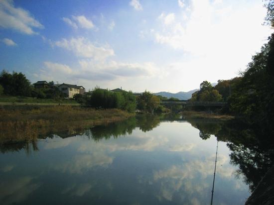 2008/1201滝宮公園紅葉4