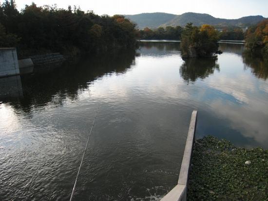 2008/1201北條池からの流れ込み1