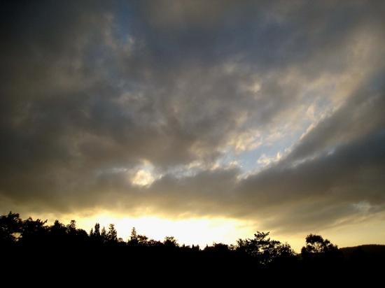 2008/1201北條池からの流れ込み空