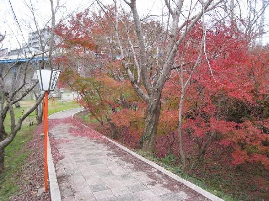 2008/12/08滝宮紅葉