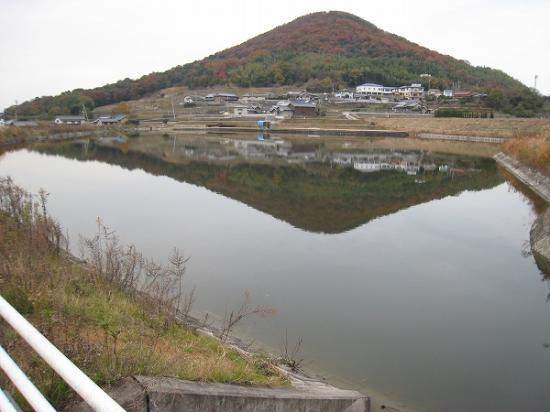 2008/12/08綾川町総合運動公園の南側野池