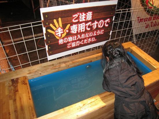 2008-12高松冬のまつり手湯