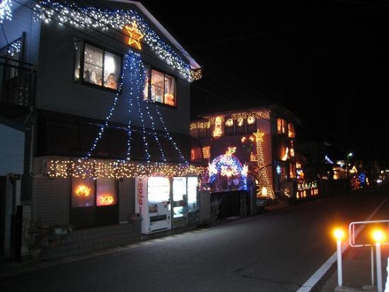2008/12月/香川県/丸亀市/郡家町の民家イルミ1