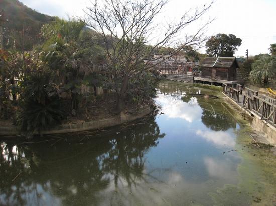 2009/01レオマ アニマルパーク2