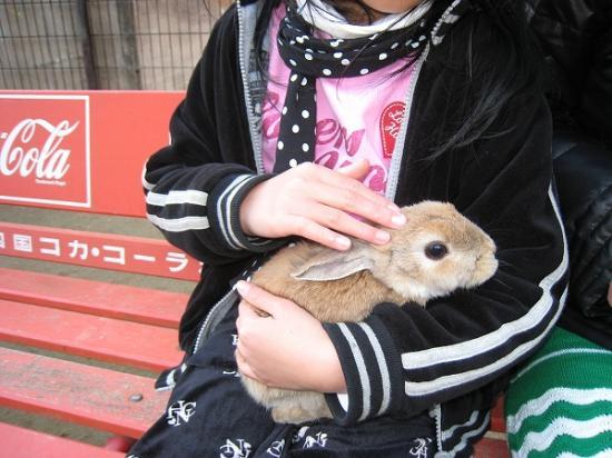 2009/01レオマ アニマルパークうさぎ