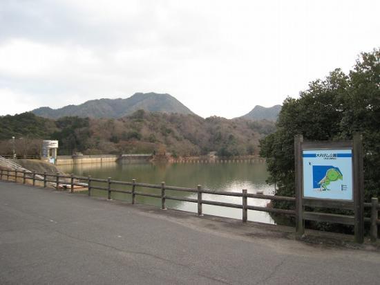 2009/01/05大内ダム1