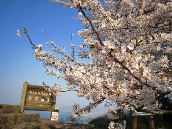 2009/04/06紫雲出山展望台