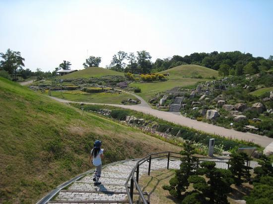 2009/6月/まんのう公園の丘1