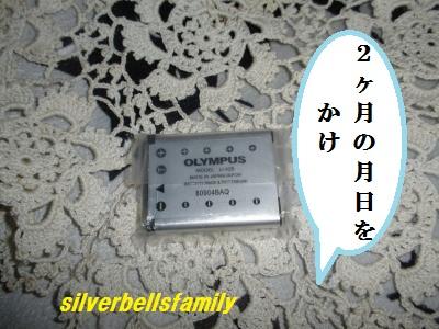 P2050003_20120208214212.jpg