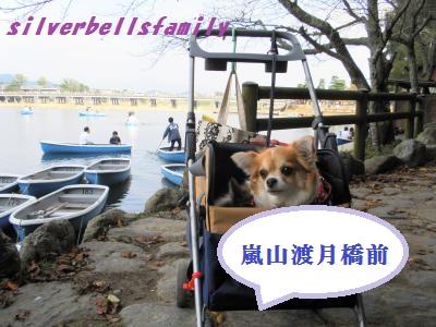 PA100012_20111010205016.jpg