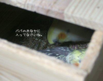 210514-n4.jpg