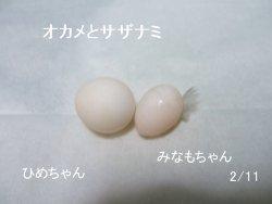 saku20090219-4.jpg