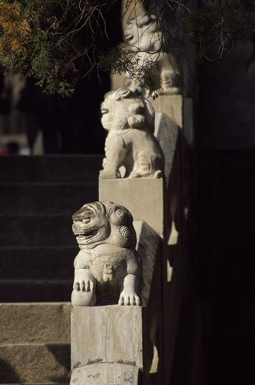 狛犬中国2