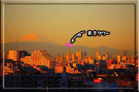 081119朝富士