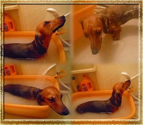 081204お風呂っ