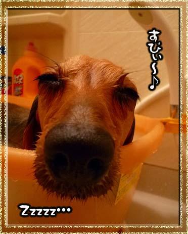 081204お風呂っ.2