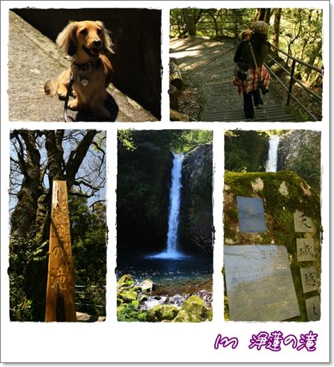 090410浄蓮の滝