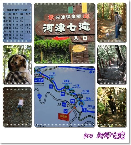 090410河津七滝