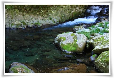 090410奇麗な水