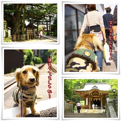090504鎌倉
