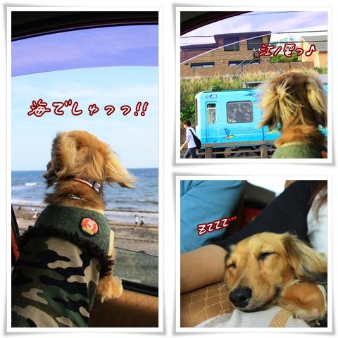 090504江ノ電でしゅ