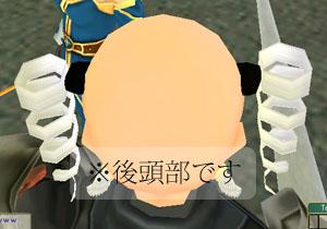禿の光が哀のメッセージ(もう、何が何やら