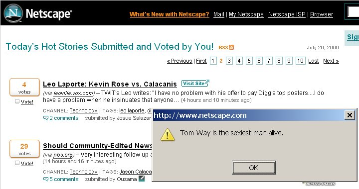 Netscape3.jpg