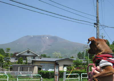 まだ軽井沢・・・
