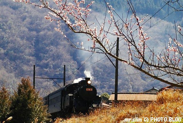 037-c108-sakidaira-senzu.jpg