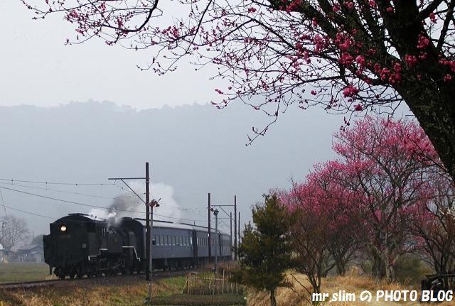 121-c11312-nukuri-ieyama.jpg