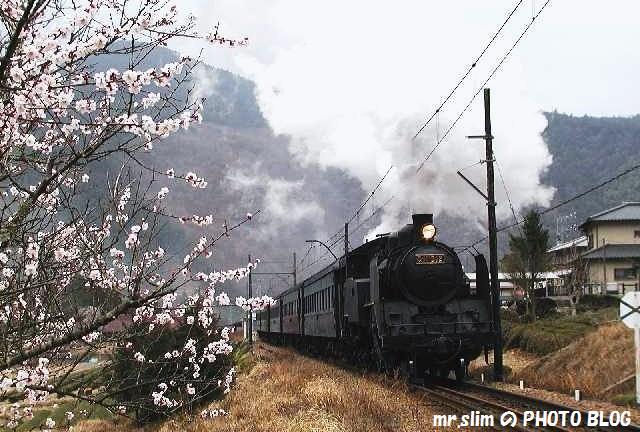ooigawa-sakidaira-27.jpg