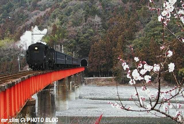 ooigawa-sakidaira-29.jpg