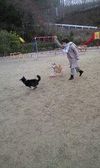 20090114renriku1.jpg