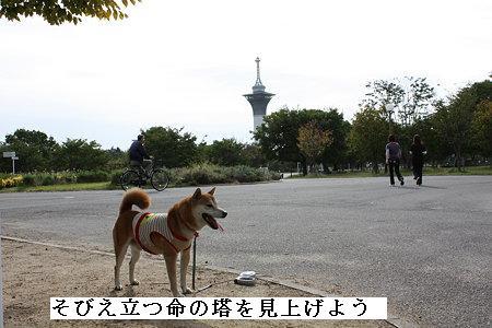 20091024ren.jpg