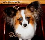080116dolce