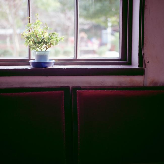 窓辺/椅子