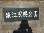 11.手打ち蕎麦 銀杏