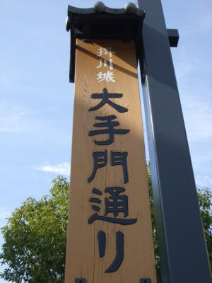 2008年 遠州の春 ・ 予告編 (2)