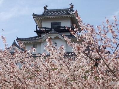 2008年 遠州の春 ・ 予告編 (3)