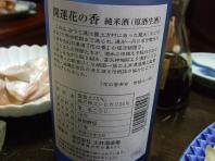 2008年 遠州の春 〔前編〕 (20)