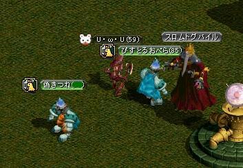 20060803132448.jpg