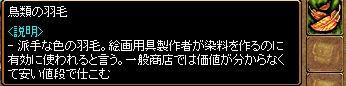 20061104150813.jpg