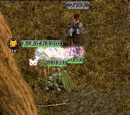 20070331032207.jpg
