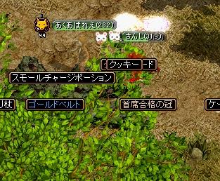 20071112113120.jpg