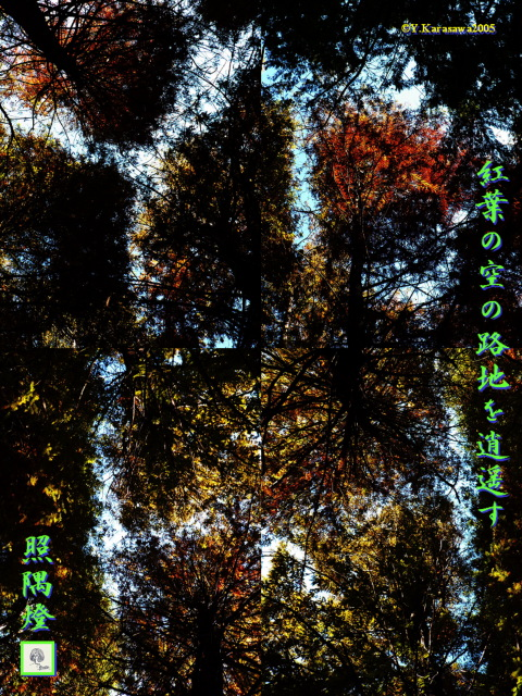 紅葉の空の路地1