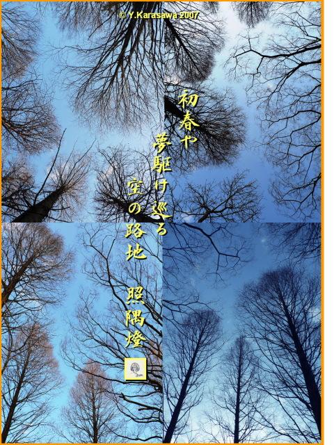 0115初春の空の路地