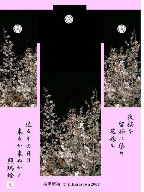 080425桜黒留袖