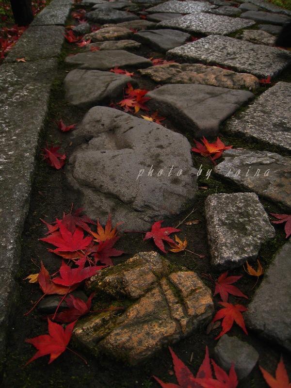 参道の石畳と。